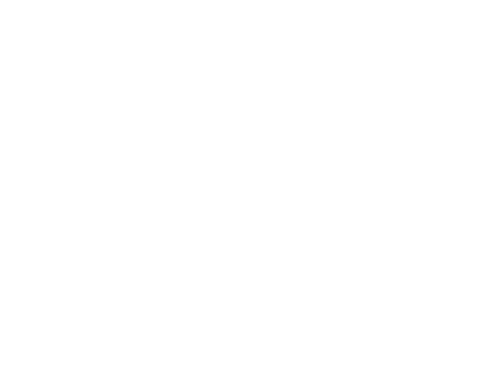 CERN Foundation
