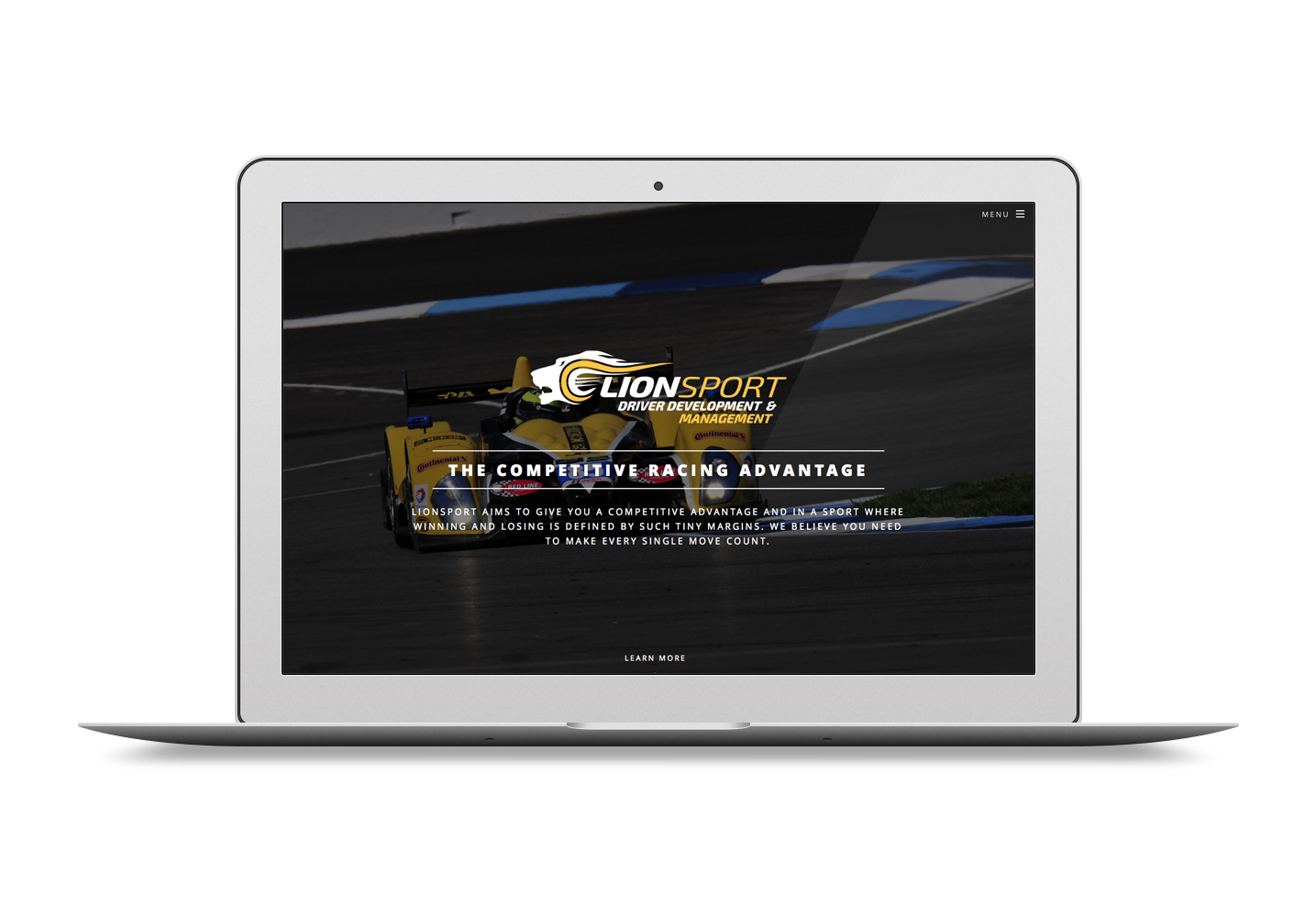 Lionsport Professional Driver Management and Coaching